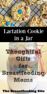 Lactation Cookie in a Jar - Thoughtful Gifts for Nursing Moms